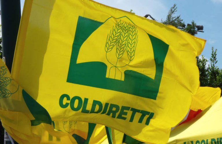 Sì a cibo sano e controllato: AVIS aderisce all'ultima campagna di Coldiretti