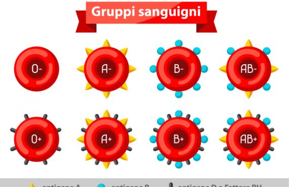 Perché i gruppi sanguigni sono diversi?